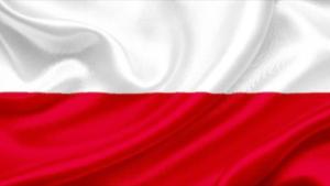 Polish Lawyer Saint Petersburg